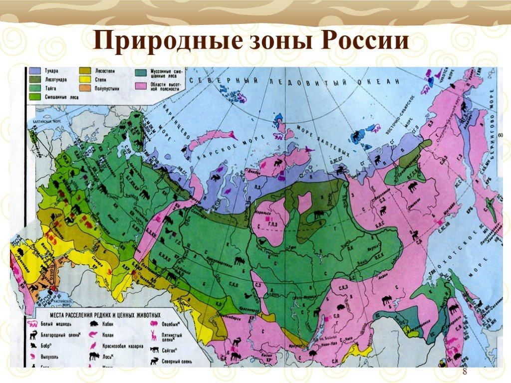 Географические пояса и природные зоны земли в таблице