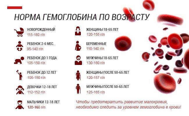 За что отвечает гемоглобин и что значит пониженный и повышенный показатель?