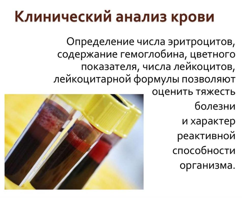 Лейкоцитарная формула крови: норма, сдвиг лейкограммы вправо и влево
