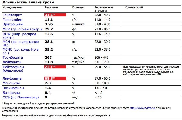 Анализ крови на rdw: что это такое, норма, понижен, повышен, расшифровка