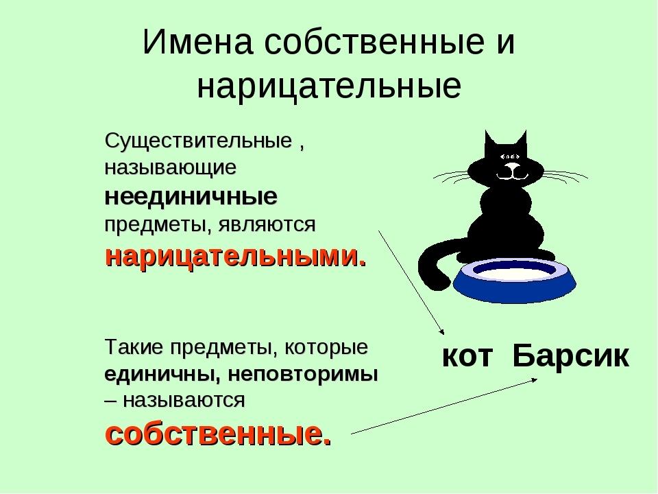 Что такое имя нарицательное и собственное :: syl.ru