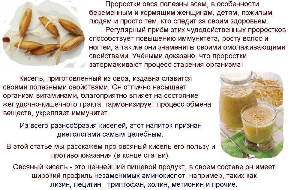 Толокно овсяное калорийность. толокно — польза и вред, рецепты и применение. как приготовить овсяное толокно в домашних условиях