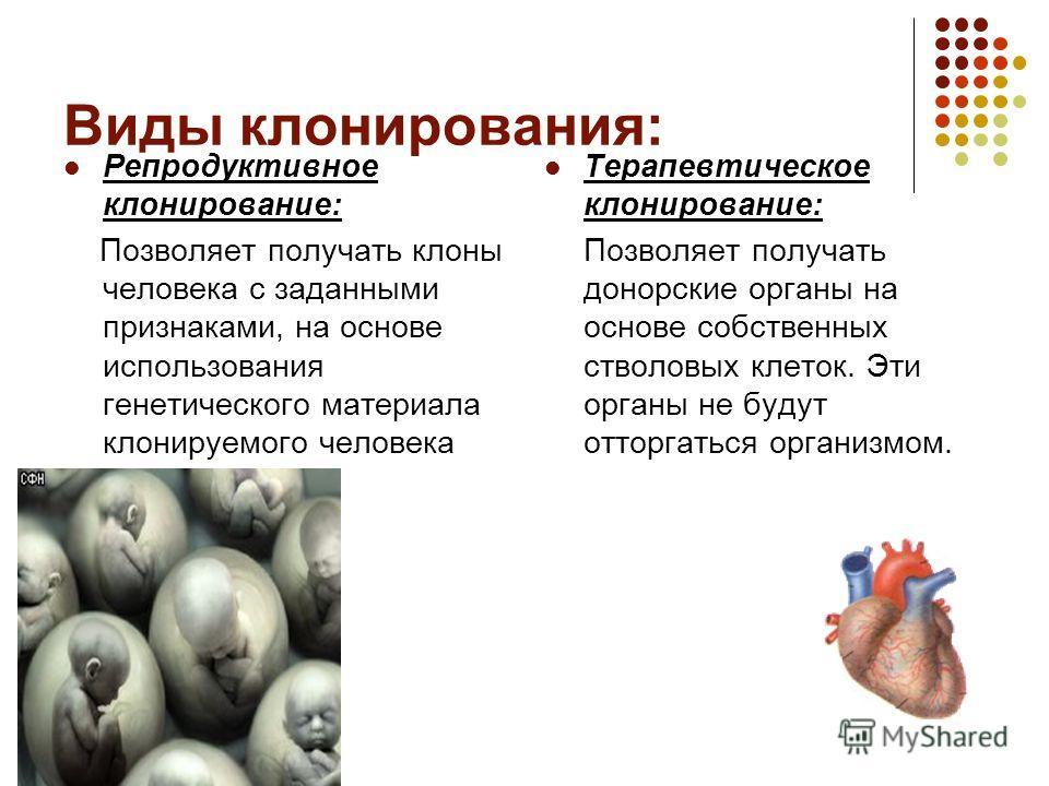 Разновидности и типы клонирования | joinfor.ru