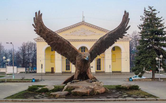 Орел (птица): описание, виды, сколько лет живет и чем питается