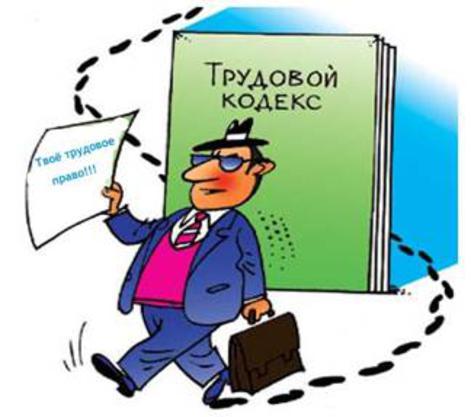 Понятие трудового права (предмет, метод правового регулирования, система) - трудовое право | юрком 74