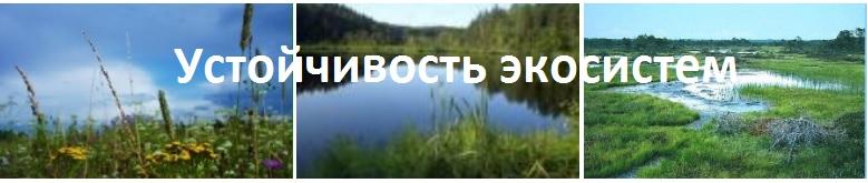 26.причины устойчивости и смены экосистем / биология. общая биология.11 класс. базовый уровень / библиотека / наша-природа.рф