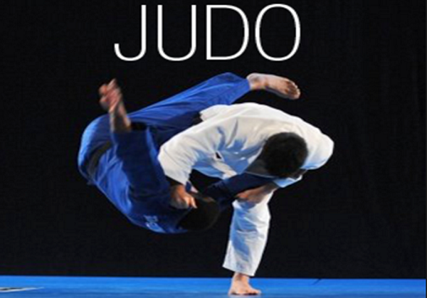 Определение дзюдо.  что означает слово дзюдо?