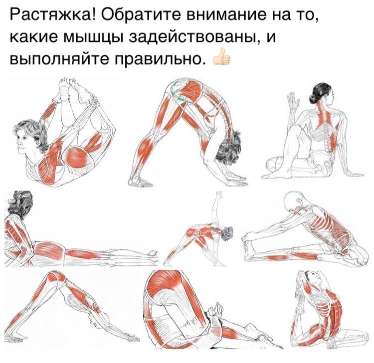 Заминка после тренировки: как правильно выполнять и какие упражнения использовать