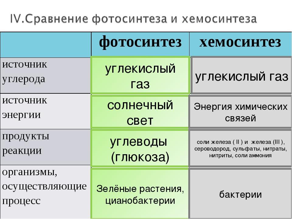 Хемосинтез — википедия