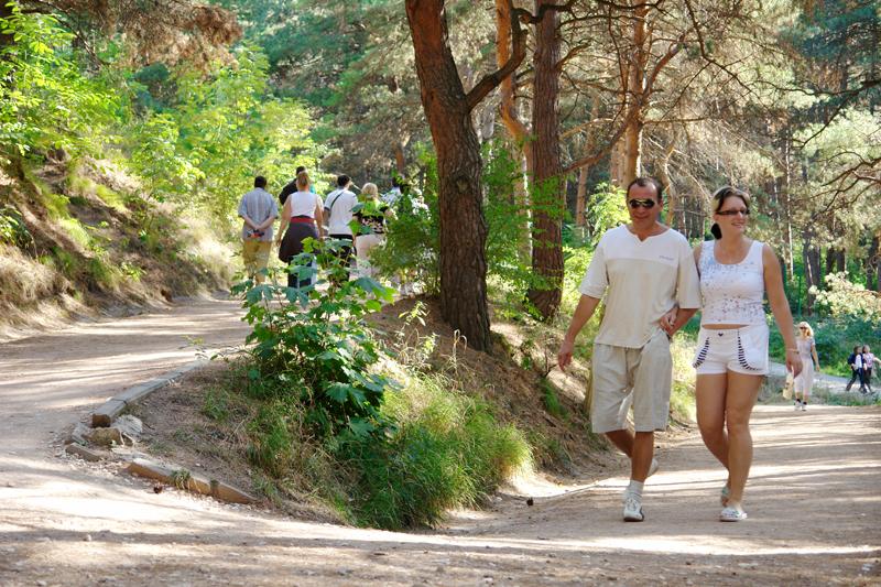 Терренкур: кому показан, маршруты, польза и преимущества лечебной ходьбы, отзывы
