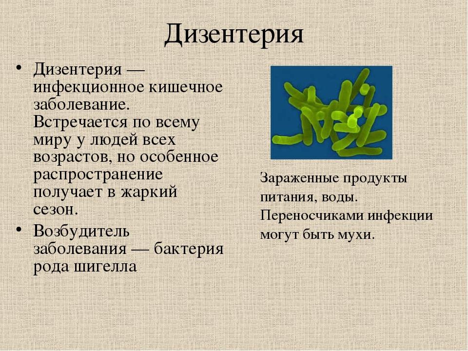 Что такое дизентерия