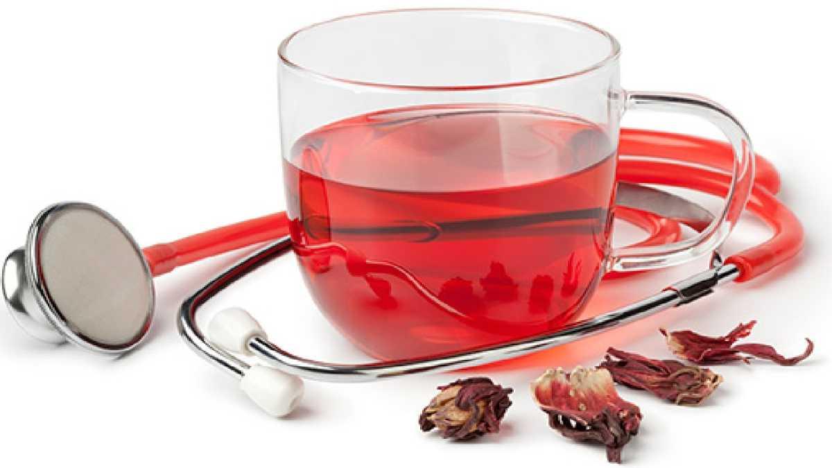 Чай каркаде: польза и вред, в какое время пить, повышает или понижает давление | zaslonovgrad.ru