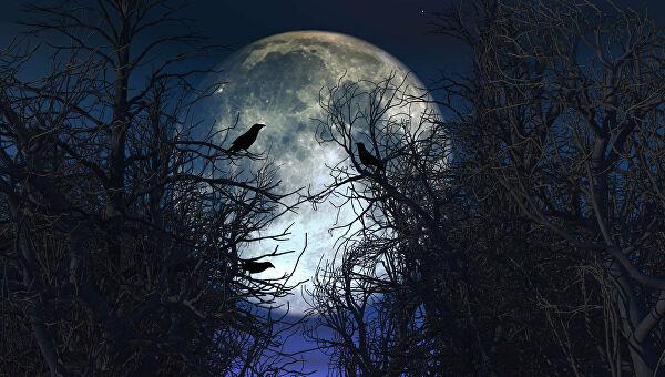«голубая луна» в октябре 2020 года. когда будет и что это такое? - курьер.среда.бердск