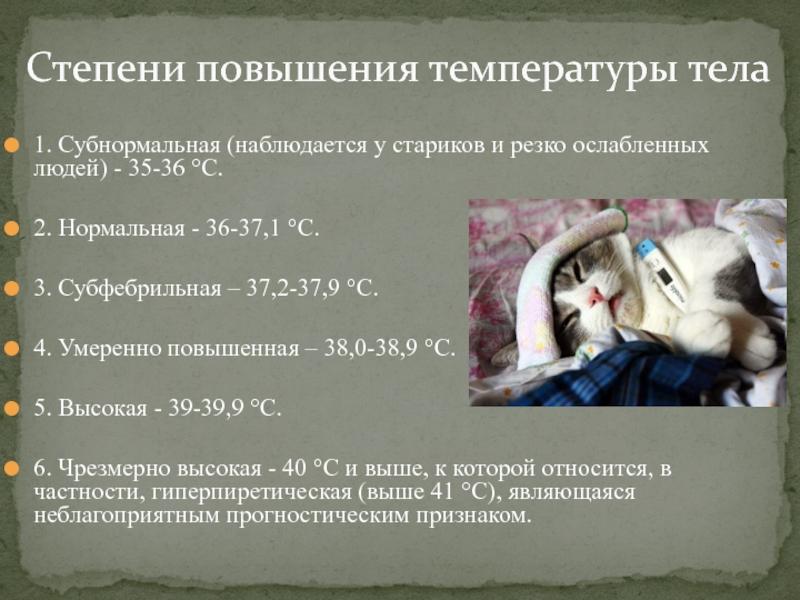 Что такое температура? единицы измерения температуры - градусы. температура пара и газа