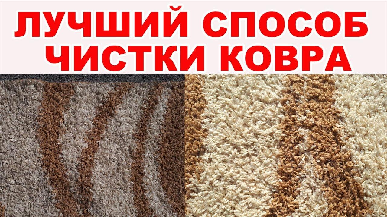 Основные критерии выбора паласа в зависимости от типа помещения