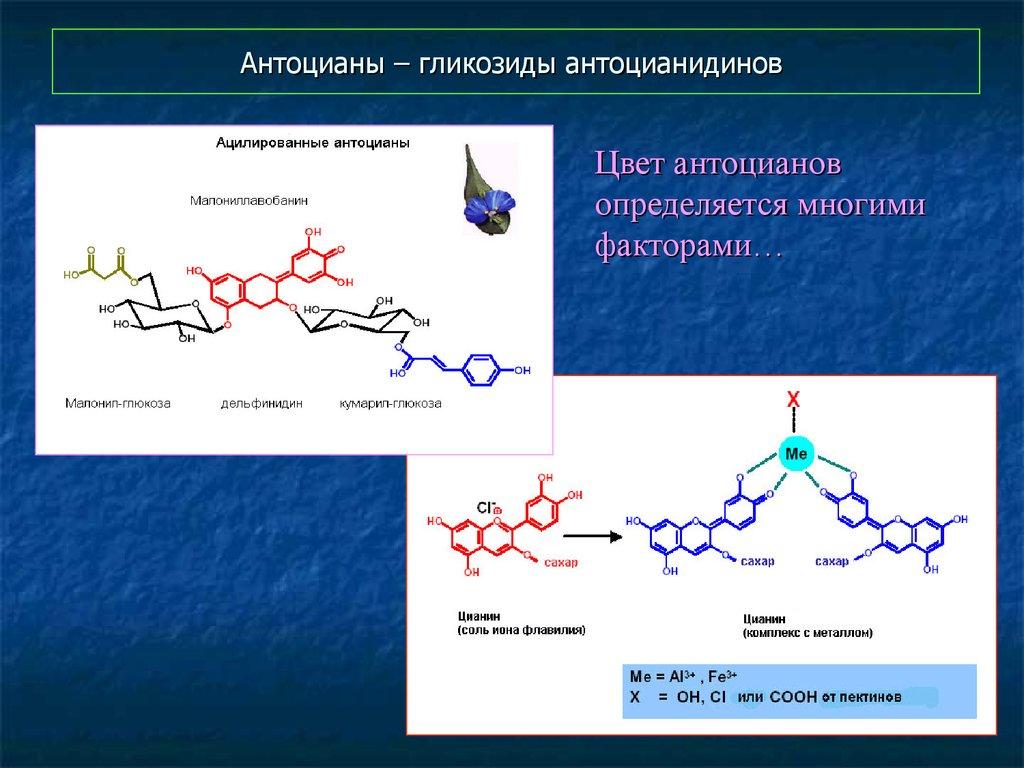 Антоцианы + продукты богатые антоцианами
