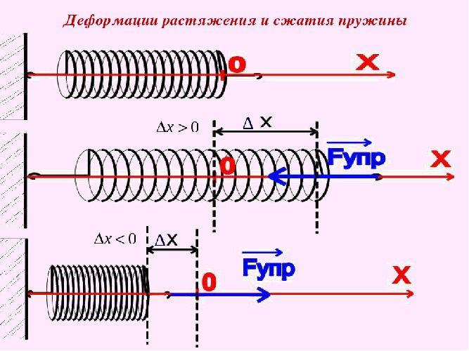 Сила упругости. деформация: ее величина и типы. закон гука - материалы для подготовки к егэ по физике