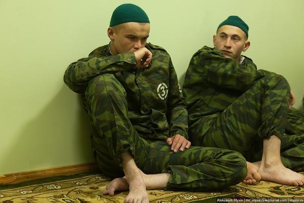 Дисциплинарный батальон — википедия. что такое дисциплинарный батальон