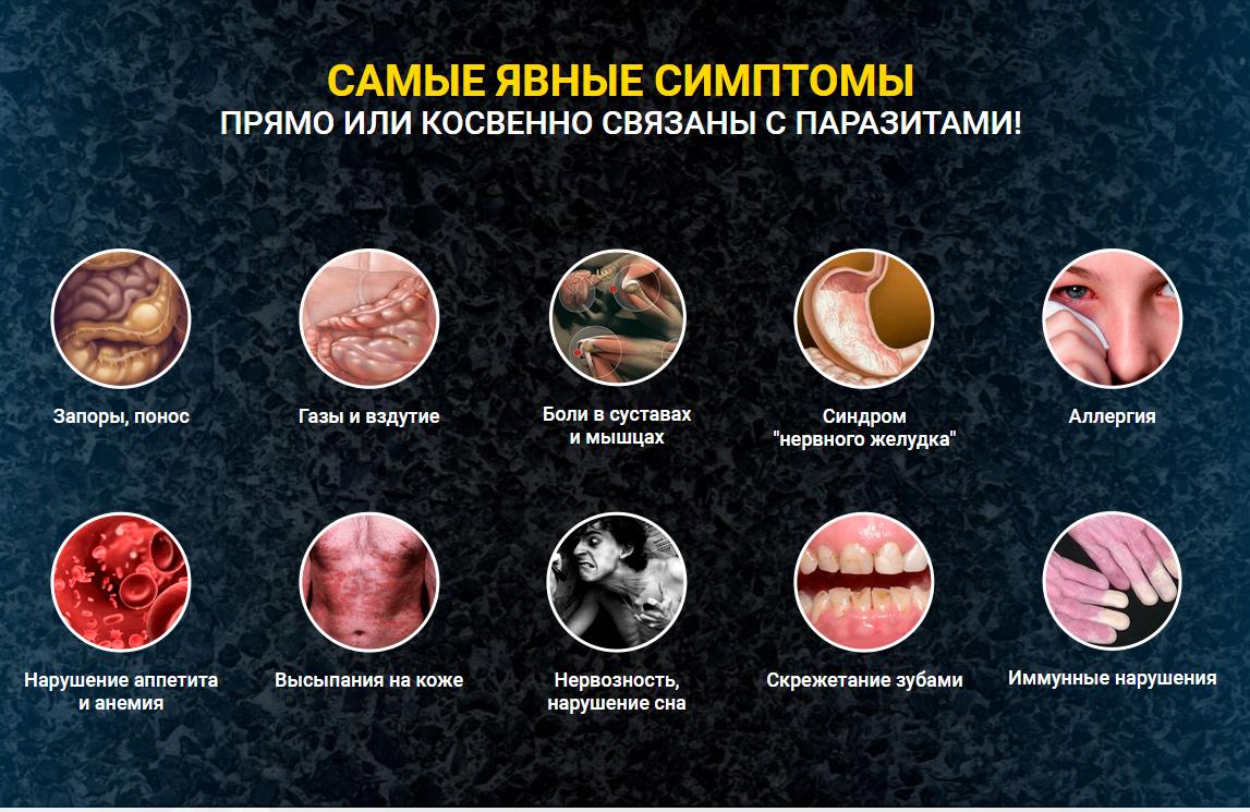 Что такое гельминты: симптомы, лечение, фото