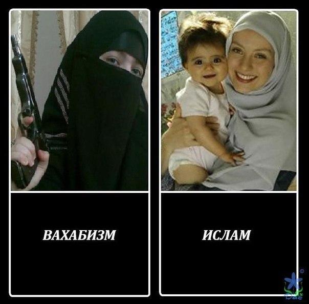 Мусульманство - древо