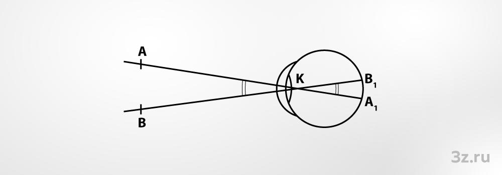 Зрение человека — википедия. что такое зрение человека