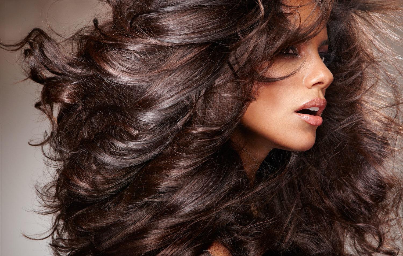 Волосы — википедия. что такое волосы