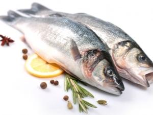 Рыба сибас (45 фото): характеристика, места и условия обитания, чилийский аналог сибаса, пищевая ценность и использование в кулинарии