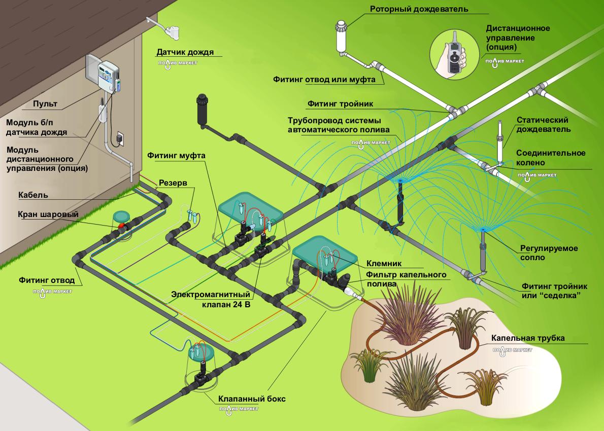 Капельный полив - как разобраться в основных нюансах такой системы?