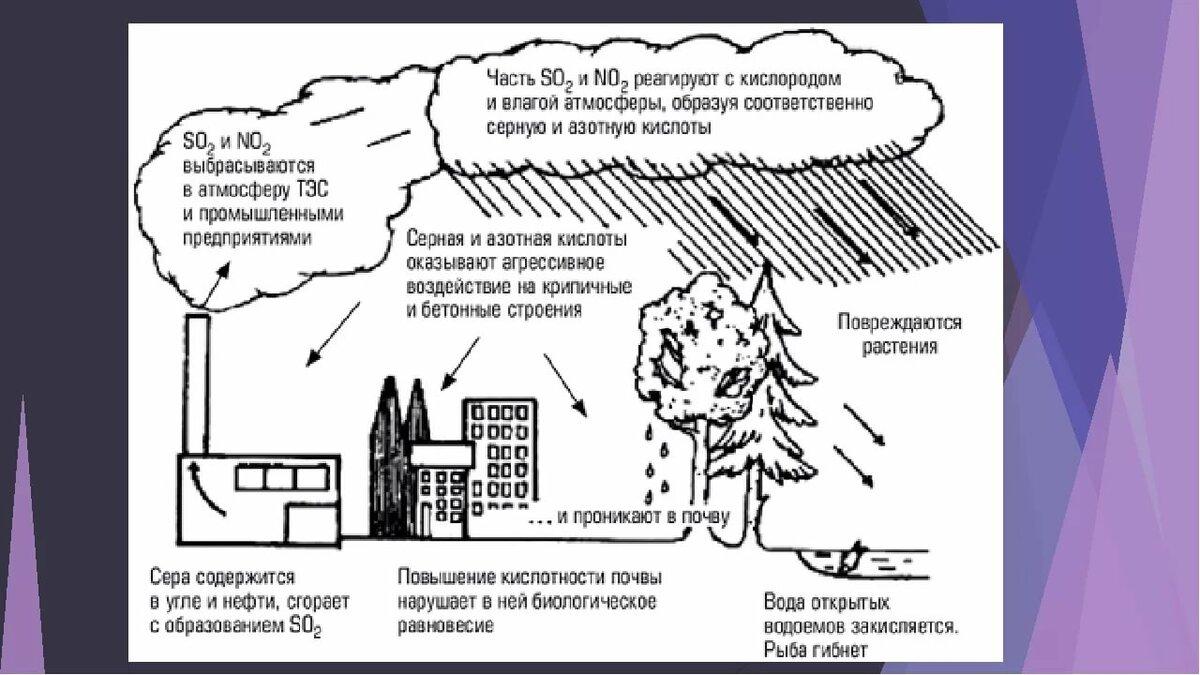 Кислотные дожди, причины образования, вредные последствия