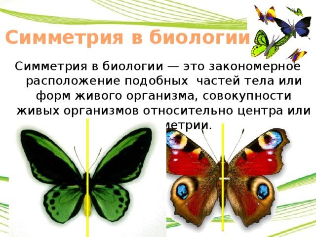 Что называется осевой симметрией