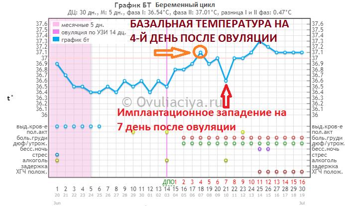Базальная температура при беременности: как измерить, какая должна быть? | компетентно о здоровье на ilive