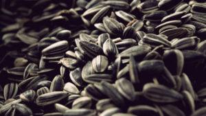 Семечки подсолнуха: состав, польза, свойства и лечение подсолнечными семечками. как жарить семечки