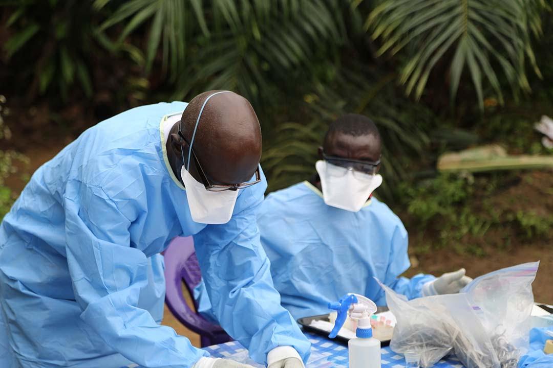 Лихорадка эбола — симптомы, лечение, история вируса | science debate