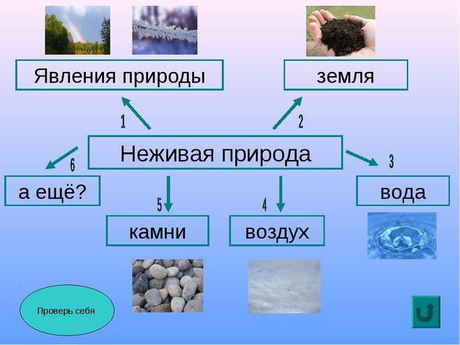 Неживая природа: определение, признаки и классификация