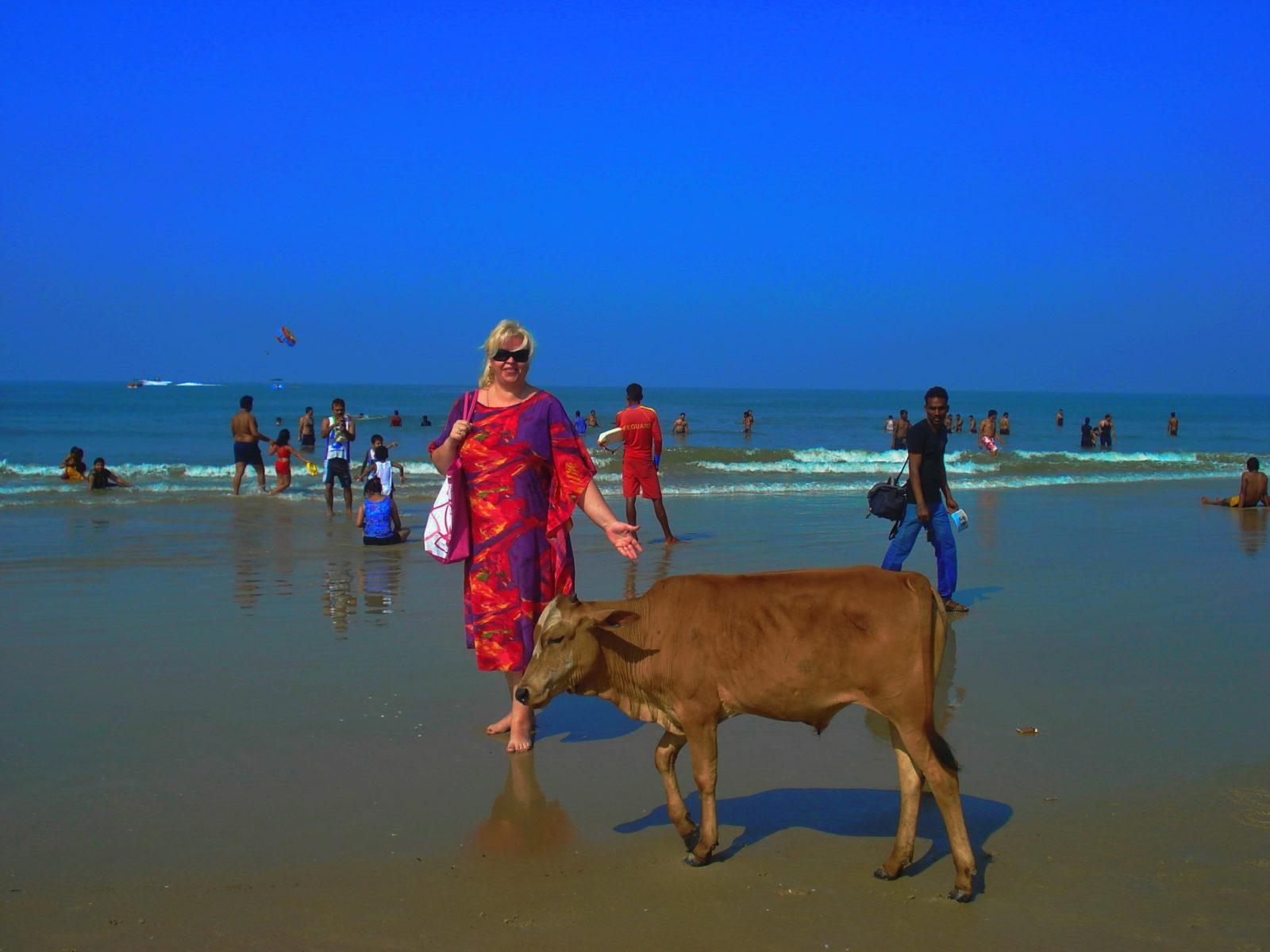 Индия | описание, население, достопримечательности, информация об индии - travellan.ru