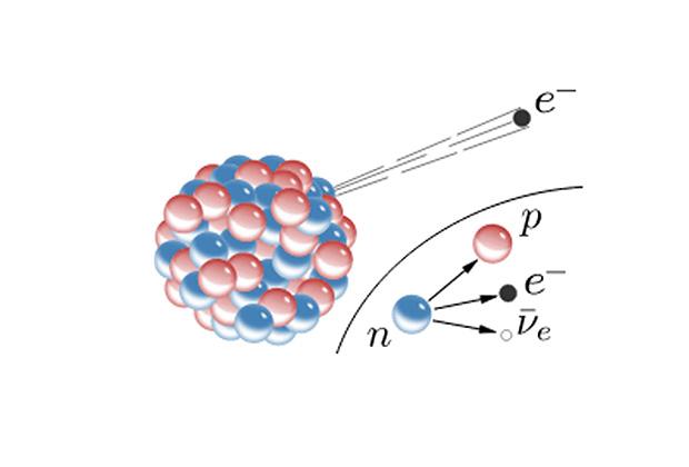 На берегу нейтринного моря – частица нейтрино