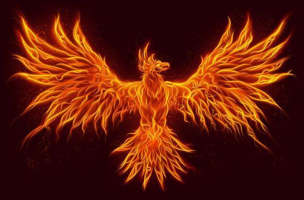 Существовала ли огненная птица феникс — значение легенды