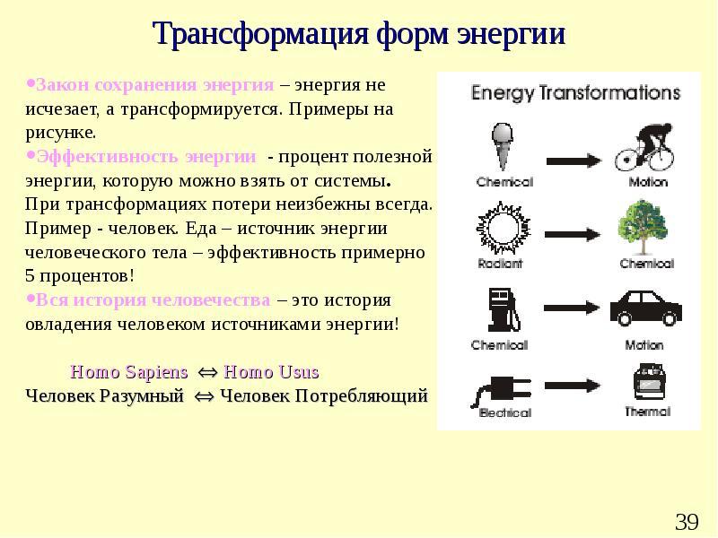 Что такое энергия ци: как развить, управлять и почувствовать энергию ци - накопление и повышение