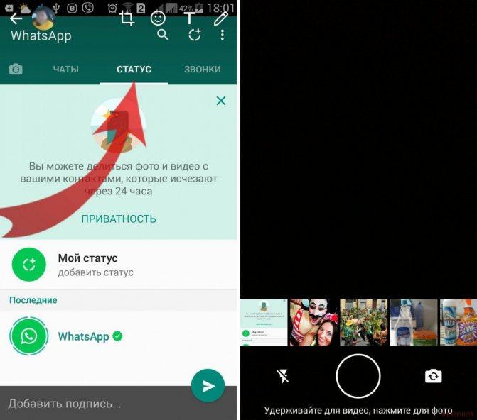 Что такое статус в whatsapp - messenger info