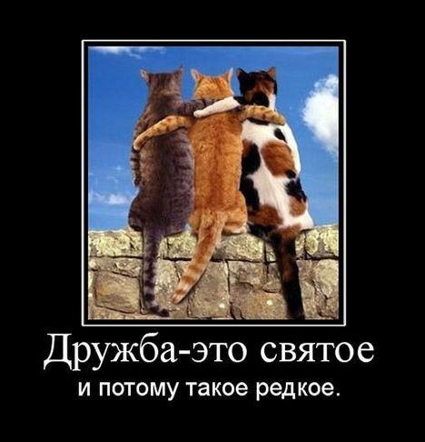 Что такое дружба: понятие, виды, отличие от обычного общения