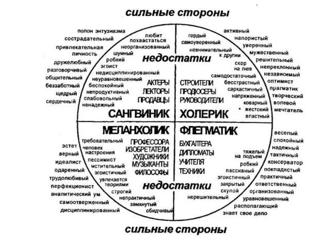 Темперамент человека: суть, виды и их характеристика