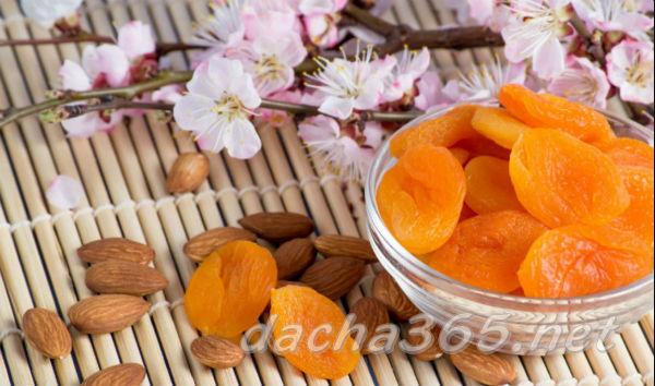 Курага: полезные свойства и противопоказания, калорийность