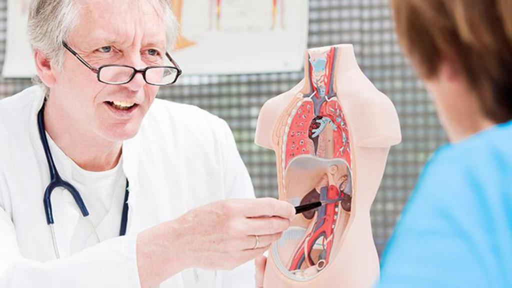 Нефролог: что за врач, какие болезни он лечит