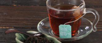 Чай с саусепом: что это такое, польза и вред, как заваривать