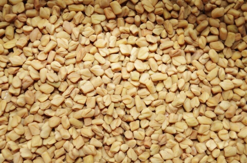 Хельба полезные свойства и противопоказания.  семена хельбы