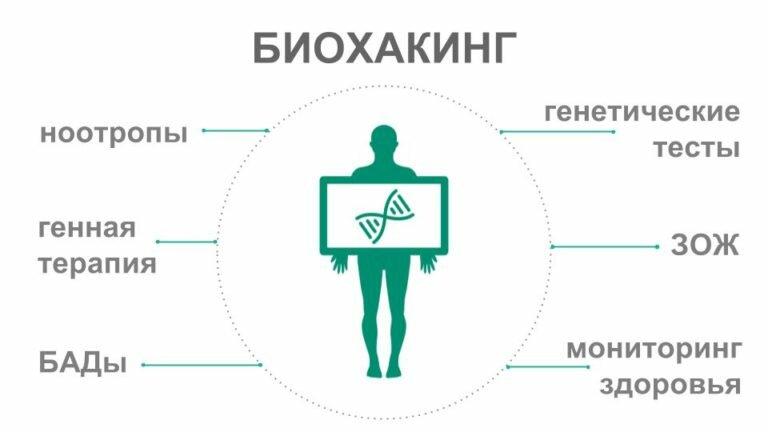 Что такое биохакинг