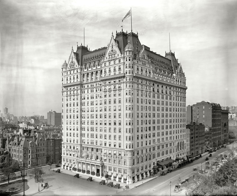Плаза (отель) — википедия. что такое плаза (отель)