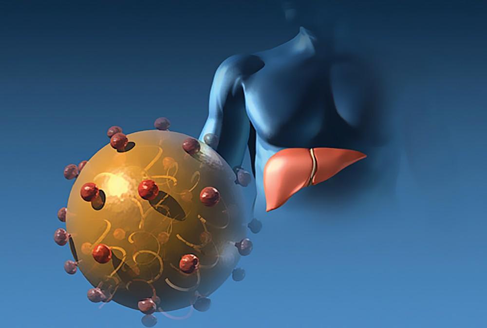 Гепатит d: что это такое, как передается, симптомы, лечение и прогноз