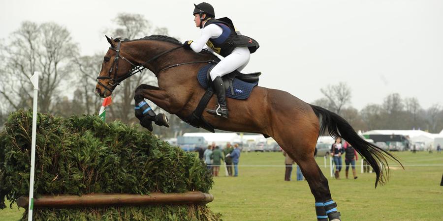Соревнования по конкуру: правила в конном спорте