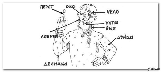 Что такое русский язык? - topkin | 2020